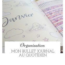 Mon Bullet Journal au quotidien