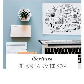 Bilan janvier 2019