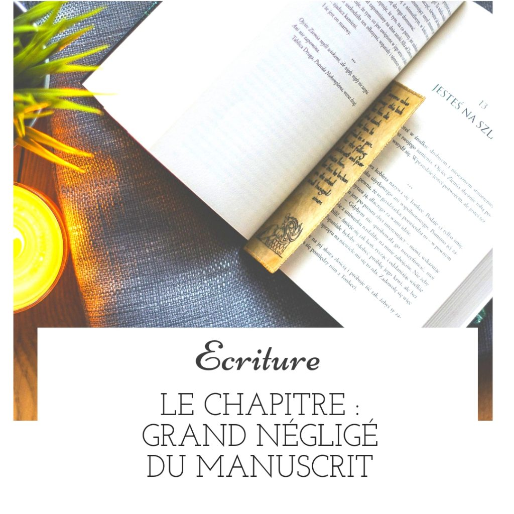 Le chapitre : grand négligé du manuscrit