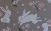 Livre + ebook + marque-page motif lapins (14,99e port inclus)