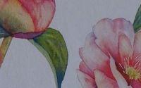 Livre + ebook + marque-page motif floral (14,99e port inclus)