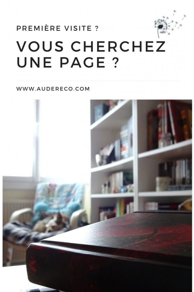 Première visite Pinterest | Aude Réco