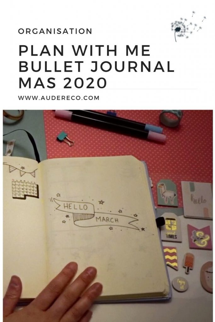 Plan With Me Bullet Journal mars 2020 | Aude Réco